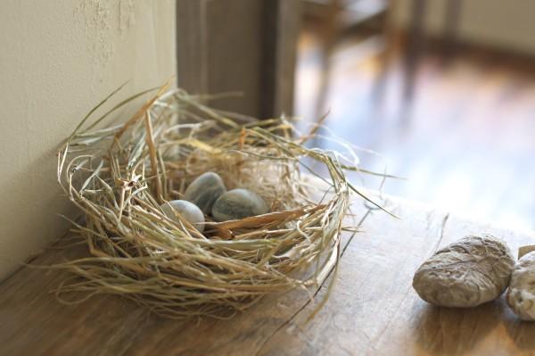 宵の実_鳥の巣