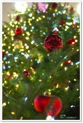 IMGP0416-クリスマスツリー