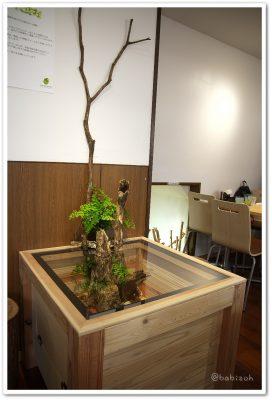 はちゅカフェ_テーブル