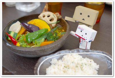 スープカリー侍_チキンと野菜20種ダンボー
