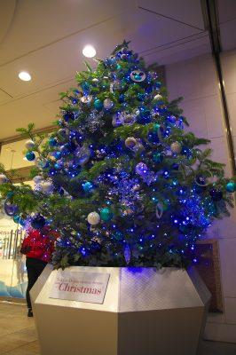 kichijoji_xmastree_東急1